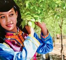 Salar Türkçesindeki Çince Unsurlar