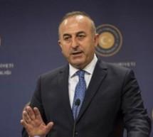 Çavuşoğlu'ndan Doğu Türkistan'ın işgaline destek