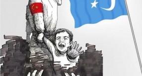 Türkistan Kaygısı