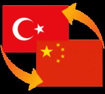 Çincedeki Türkçe kelimeler üzerine